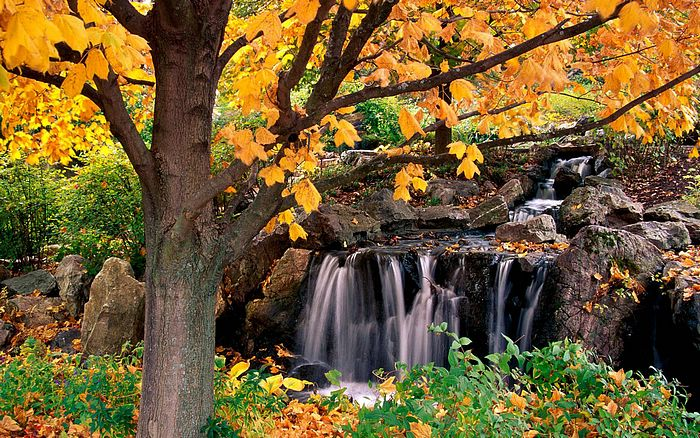 Wallpapers of Beaitiful Nature(Vol.2) -HDTV Landscape wallpapers ...