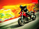 Extreme Thrilling : 2008 Ducati Hypermotard 1100 & 1100S Wallpapers40 pics
