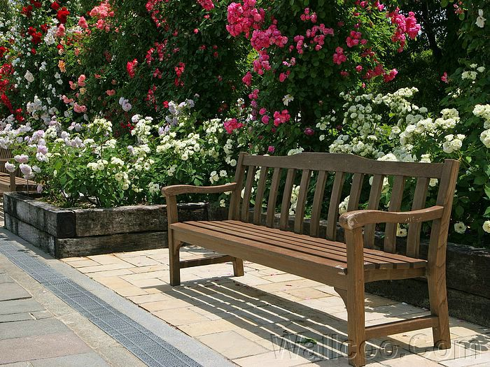 Garden Bench With Blooming Flowers Beautiful Japanese Garden Wallpaper 16
