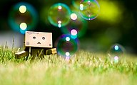 Danbo Danboard HD Wallpapers25 pics