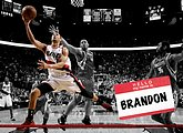 NBA: Portland Trail Blazers 2009-10 Season10 pics