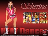 NBA Dancers: Miami Heat Dance Team Wallpapers48 pics